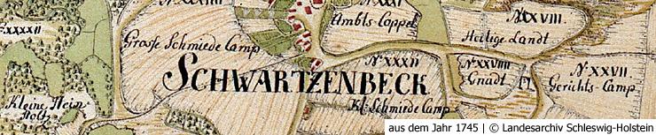 Schwarzenbek Geschichte